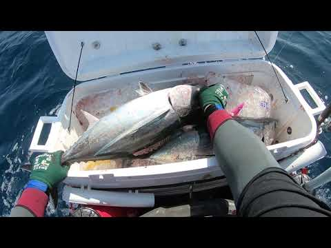 Jet Ski Fishing In Oregon 30 Miles Out For Albacore Tuna