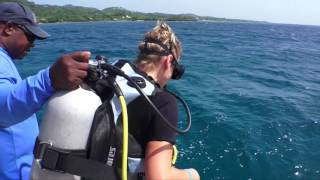 PADI women´s dive day, dive like a girl!