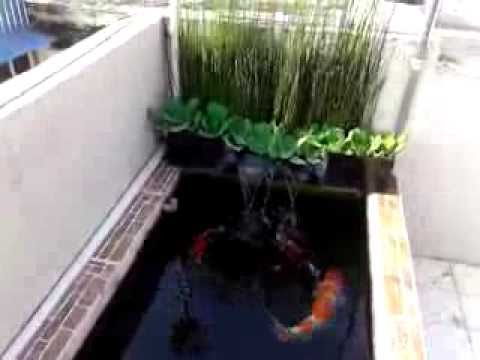Mini koi pond filtration system diy youtube for Koi pond system