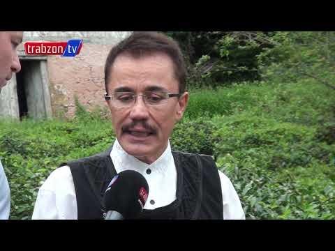 Ender Saraç ; Sağlığınız İçin Sölen Matcha Çayı İçin. Trabzon'un Markası Şölen.