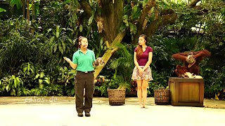 Funny Animal Show in Singapore Zoo.