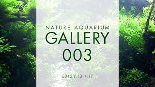 [adaview] Nature Aquarium Gallery#003(en)