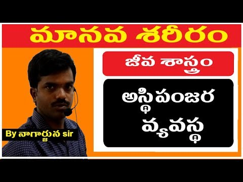 Biology Classes in telugu || General Science Classes in Telugu ||  Human Body ,Skeleton System