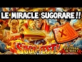 SUGOFEST SPÉCIAL MARINE FORD - Le miraculeux sugorare !! - OPTC FR
