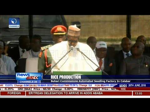 Buhari Commissions Automated Rice Seedling Factory In Calabar