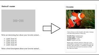 Udacity: Animal Trading Card Project