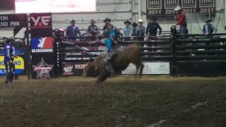 Jared Parsonage rides Carson's Quest for 84.5 points (PBR)