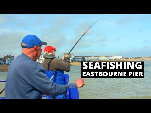Sea Fishing Vlog- Eastbourne Pier-  Lessons From Locals