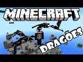 Ataque de Dragões - Minecraft