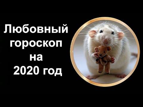 Любовный гороскоп на 2020 год для всех знаков зодиака. Узнай, что ждет тебя в будущем году!!!!
