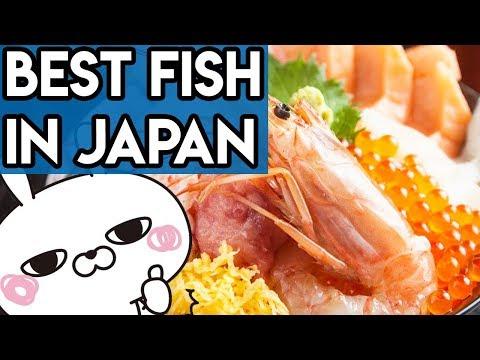 Tsukiji Fish Market and Japanese Street Food Tour