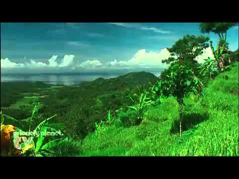 bali lonely planet travel - YouTube