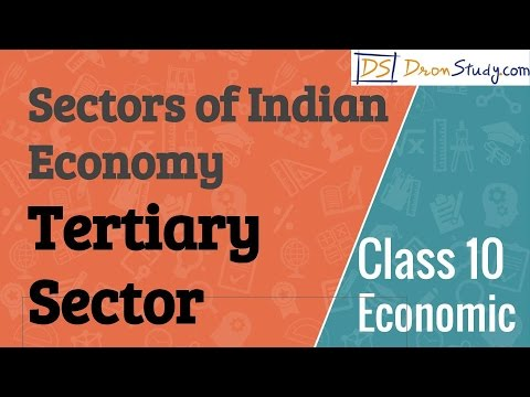Tertiary Sector - Sectors of Indian Economy  : CBSE Class 10 X Economics