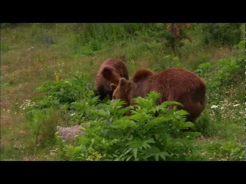 България - През дивите Балкани | Bulgarien - Durch den wilden Balkan