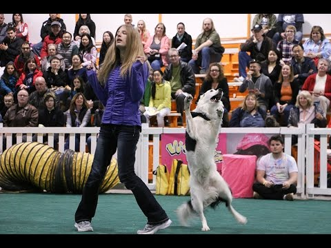 Toronto Canadian Pet Expo 2015!