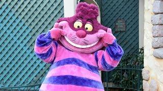 Cheshire Cat Meet and Greet at Disneyland Paris Halloween Festival 2018 - Chat de Cheshire
