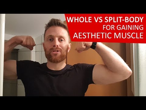 Whole VS Split Body Training (for Gaining Aesthetic Bodyweight Muscle)