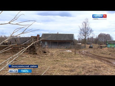 В Лихославльском районе нашли 35 трупов коров