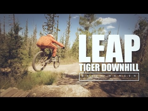 TIGER DOWNHILL RIDE (LEAP)