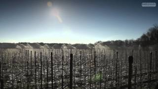 Ochrona Przeciwprzymrozkowa - 2014 (Frost protection,Frostbuster Protecting orchad in the blossom)