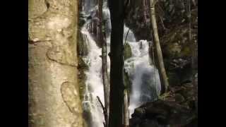 izvir Sopata Ljubno ob Savinji 21. april 2013