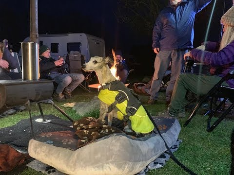 The Whippet, Campervans and YouTubers on a Derbyshire Camp