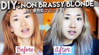 DIY NON-BRASSY BLONDE HAIR: Asian Hair| From Yellowy Light Brown To Cold Blonde using Wella T11&T18