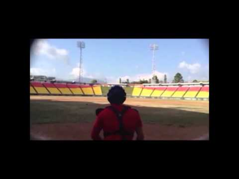TPF   Nelson Chinchilla Baseball 2014
