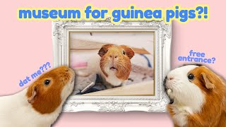 Guinea Pigs Visit an Art Gallery: DIY Museum | GuineaDad
