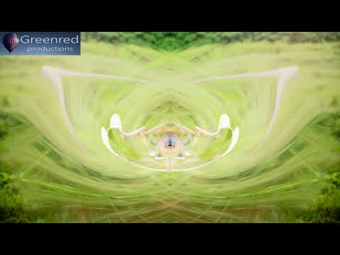 Activate Your Brain for Studying   Focus Music with Binaural Beats, Concentration Music
