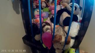 Kids stuffed animal Zoo organizer