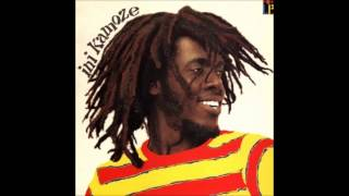 Ini Kamoze - Here Comes The Hotstepper (z:le re-drum)