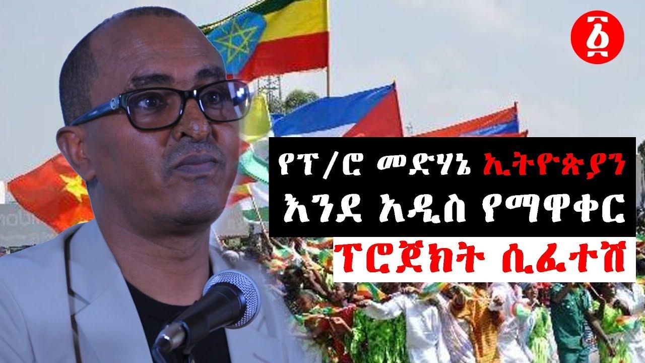 የፕ/ሮ መድሃኔ ኢትዮጵያን እንደ አዲስ የማዋቀር ፕሮጀክት ሲፈተሽ| Ethiopia