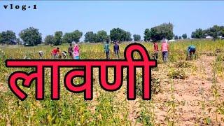 laavani !! a day of indian farmer !! farmer protest!! vlog 1