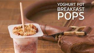 Yoghurt Pot Breakfast Pops