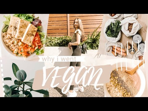 why i went vegan as a teen (my experience + advice to new vegans)