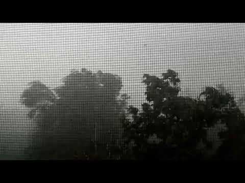 CXID.info: Луганск ураган 13 06 19
