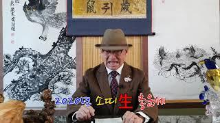 2020년 경자년 소띠生 총운세 토정비결 사주팔자 하루빠른 오늘의운세