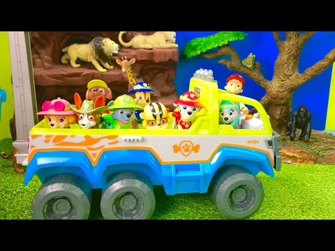 Thumbnail: Best Learning Animals Video for Preschool Children - Paw Patrol Jungle Adventure