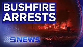 Teenage boy and girl charged over Sunshine Coast bushfire | Nine News Australia