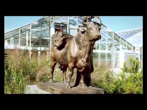Kloud - Garden (Music Video)
