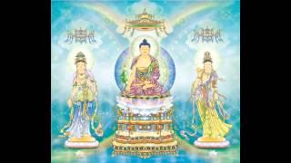 Tụng Chết Mà Sống - Thầy Thích Huệ Duyên - Phật Pháp Vô Biên