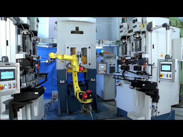 Hydraulische Doppelstauchpresse mit Roboterarm