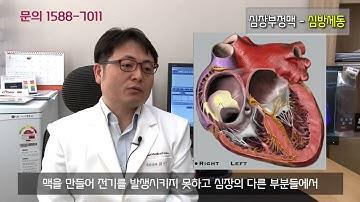 건강백과사전 - 부정맥 심방세동
