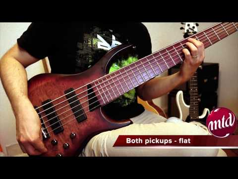 MTD Kingston Andrew Gouché 6 String Bass Demo/review