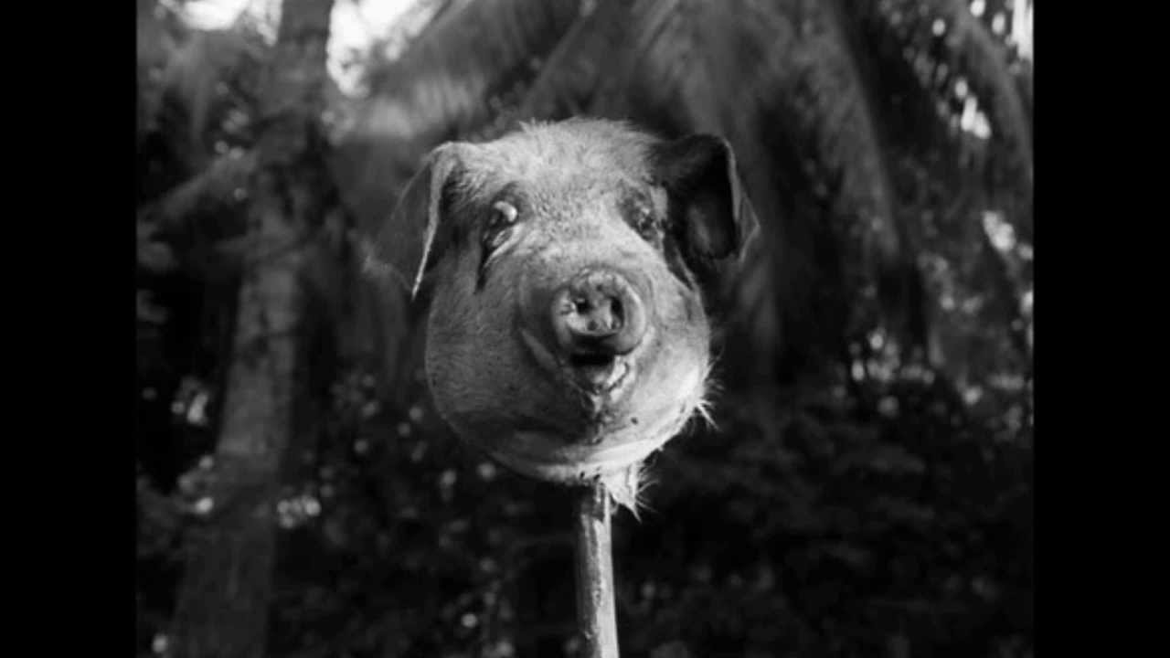 Cartoon pig head on a stick - photo#13