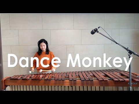 Dance Monkey -