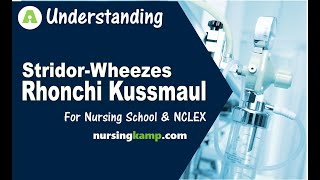 What are Kussmaul Cheynestokes Apnea Bradypnea Tachypnea Respiration Nursing KAMP NCLEX Review 2019