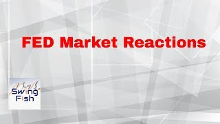 Forex Market Reactions