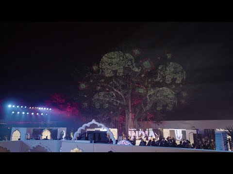 Tree Projection Mapping, Google Art for India evening. New Delhi
